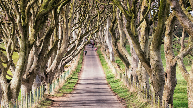 There's a brilliant new documentary about the Game of Thrones experiences in Northern Ireland