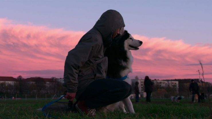 Netflix's documentary series about dogs has finally arrived and that's our weekend sorted