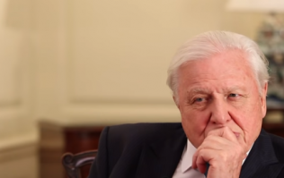 David Attenborough is appealing for help for 'the defining issue of our time'