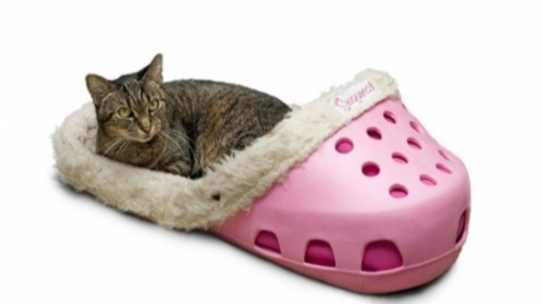 Lads! Croc-shaped PET BEDS exist, and we actually kind of love them