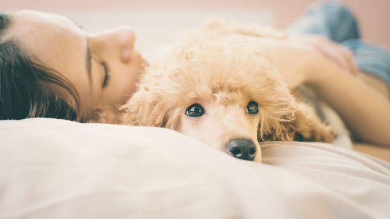 According to science, it's actually better to sleep next to a dog than a man