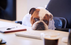 These are the most sleep-deprived professions, and yep we get it