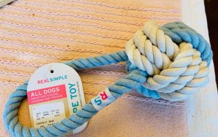 Owner shares heartbreaking warning about rope toys after golden retriever dies
