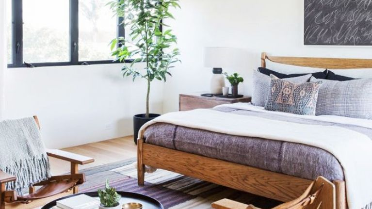 5 houseplants that will help you get a better night's sleep