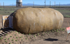 You can now spend the night in a giant potato for just €178