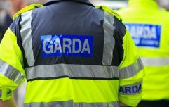 A man and a 5-year-old boy have died following a road crash in Offaly