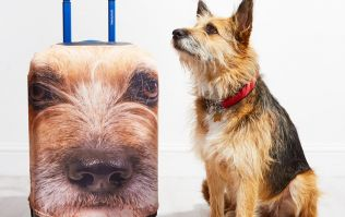 You can now get a suitcase with your dog's face printed all over it