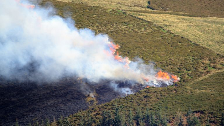 Orange fire warning issued as temperatures are forecasted to rise