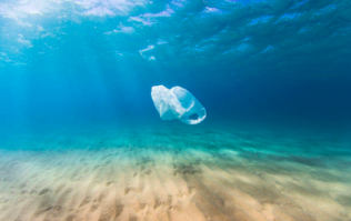 A free festival in Cork wants to save our seas from plastic pollution