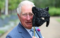 Donald Trump called Prince Charles the 'Prince of Whales' and absolutely nah