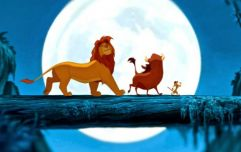 15 things from Penneys' new Lion King range that we'll be snapping up ASAP