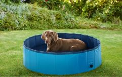 Lidl is releasing a doggy paddling pool so your doggo can stay cool in the sun