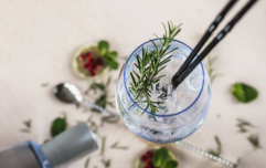 This Dublin college has a distillery course so you can make ALL the homemade gin
