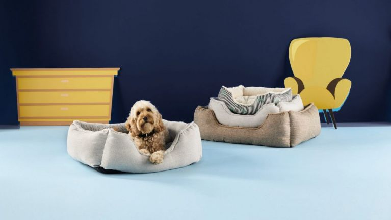 Aldi is doing a massive pet event later this month with some serious deals to spoil your fluffy friend
