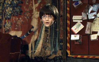You can now get your own version of Harry Potter's invisibility cloak