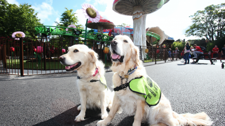 Tayto Park invites visitors to try sensory tunnel for Irish Guide Dogs event