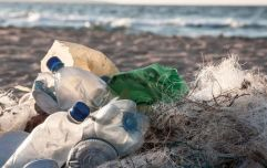 Just 1 in 6 Irish beaches and rivers meet minimum European standard of cleanliness