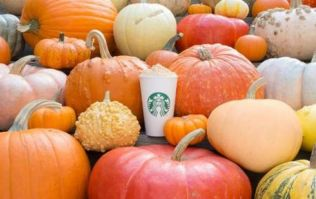Starbucks are introducing a new pumpkin themed drink this year and it sounds delicious