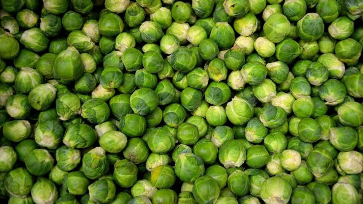 Brussels sprouts gin is here to ruin our festive drinks