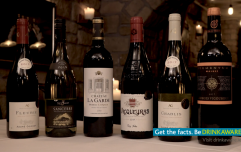 How to be a wine connoisseur: all the tips and tricks for the wine-tasting newbie