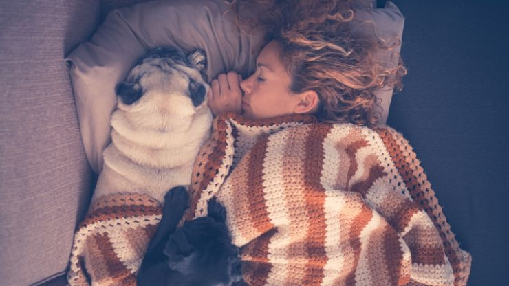 Research proves that sleeping beside your dog has some pretty great side effects