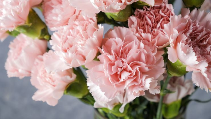 Research says having fresh flowers in your home is good for your health