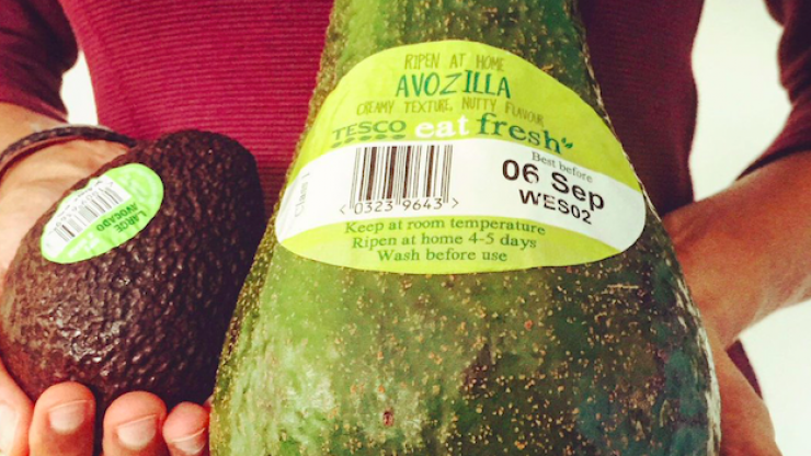 Smashing: Giant 'Avozillas' are back in Tesco from today