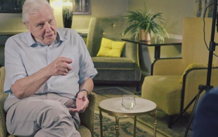 WATCH: David Attenborough praises young people's response to climate change