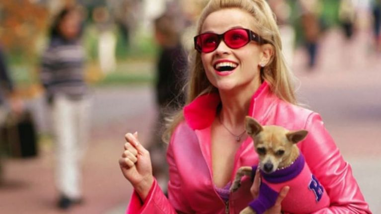 You're about to bend and snap because the release date for Legally Blonde 3 is HERE