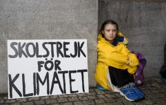 From one to millions: Greta Thunberg's climate strike made waves in Dublin city centre today