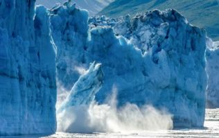 The affects of climate change are accelerating, according to experts