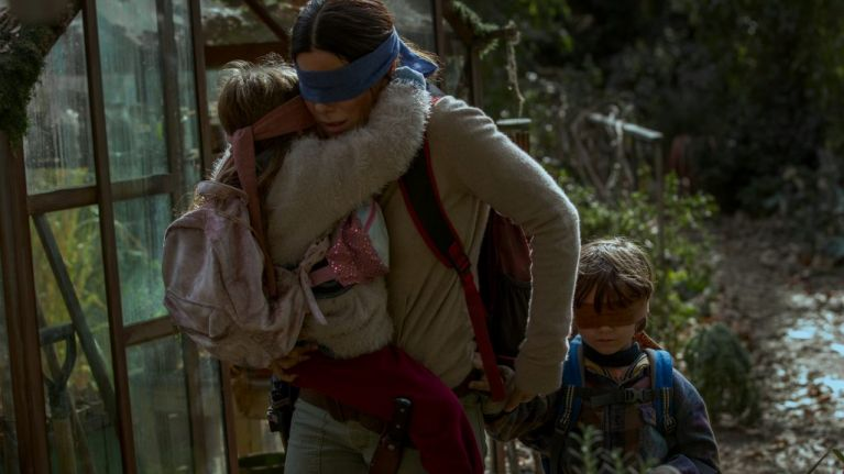 Netflix issues statement to fans who are trying the Bird Box challenge