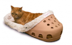 Here's a pet bed shaped like a giant Croc for you to put your animal in