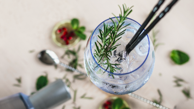 Drinking a G&T can speed up your metabolism, according to research