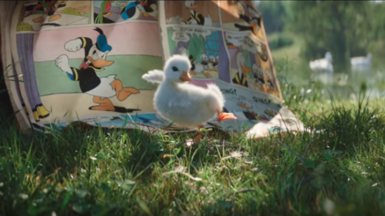 We have MELTED after seeing this video of a duckling obsessed with Donald Duck