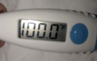 Boyfriend loses his shit when he mistakes thermometer for a pregnancy test