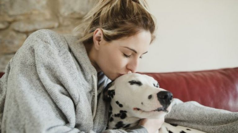 Brilliant news because petting a dog can lower your blood pressure