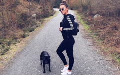 Sarah Hanrahan's trip to Cork and Kerry is perfect for your dog pal too!