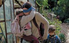 There's going to be a sequel to Bird Box and it sounds absolutely terrifying