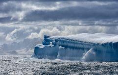 'Sydney-sized' iceberg breaks off from Antartica ice shelf