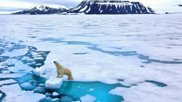 What climate change really means and how we can each make a massive impact (for the better)