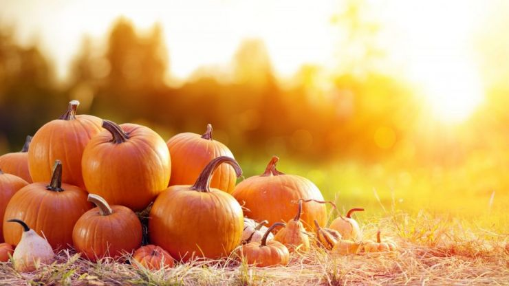 The Wicklow Street Clinic has launched Pumpkin Latte facials and it sounds perfect for autumn