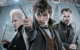 The screenwriter of the best Harry Potter films will finally be working on the Fantastic Beasts saga