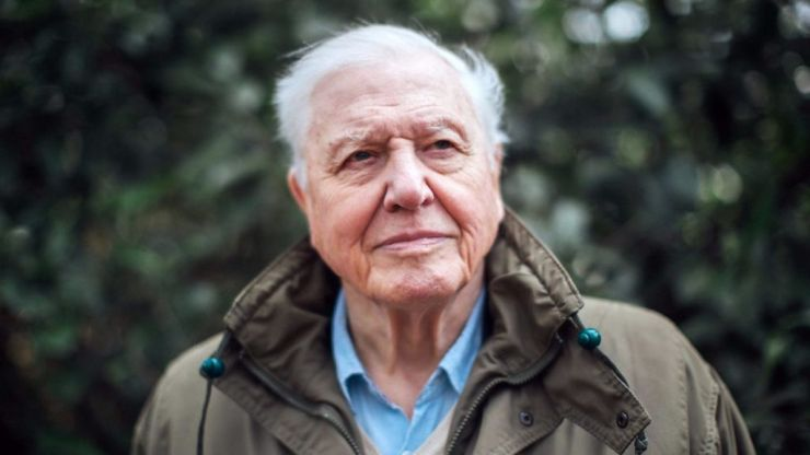 David Attenborough has just confirmed a brand new nature series for 2021