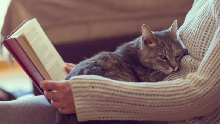 Reading for just six minutes reduces your stress more than pretty much anything else