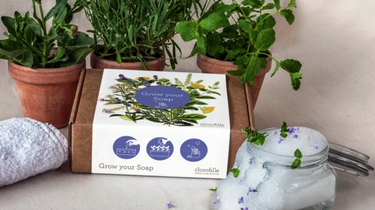 There is an Irish company is selling plants that you can use to grow your own soap