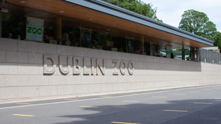 #Covid-19: Dublin Zoo reopens today with new safety measures in place