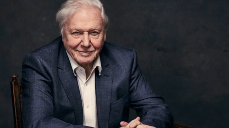 David Attenborough is making another five-part documentary series for the BBC