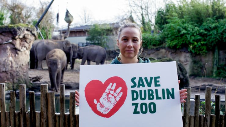 'Save Dublin Zoo' campaign launched amid fears it may have to close its doors