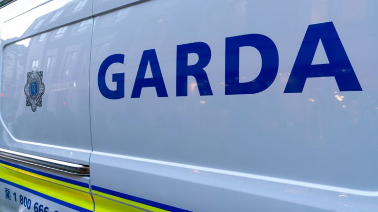 A woman has died following a suspected hit and run in Kildare